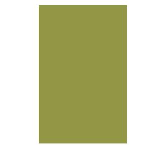 icon-arrow